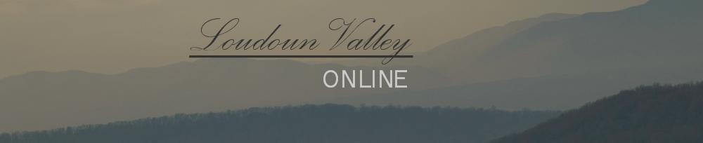 Loudoun Valley Online